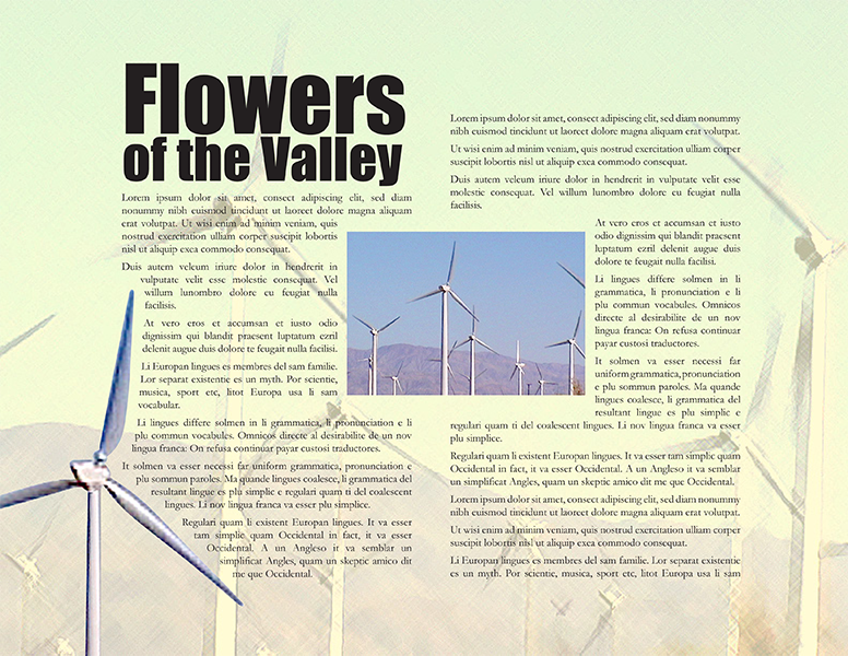 "Magazine Article - ""Flowers of the Valley"""